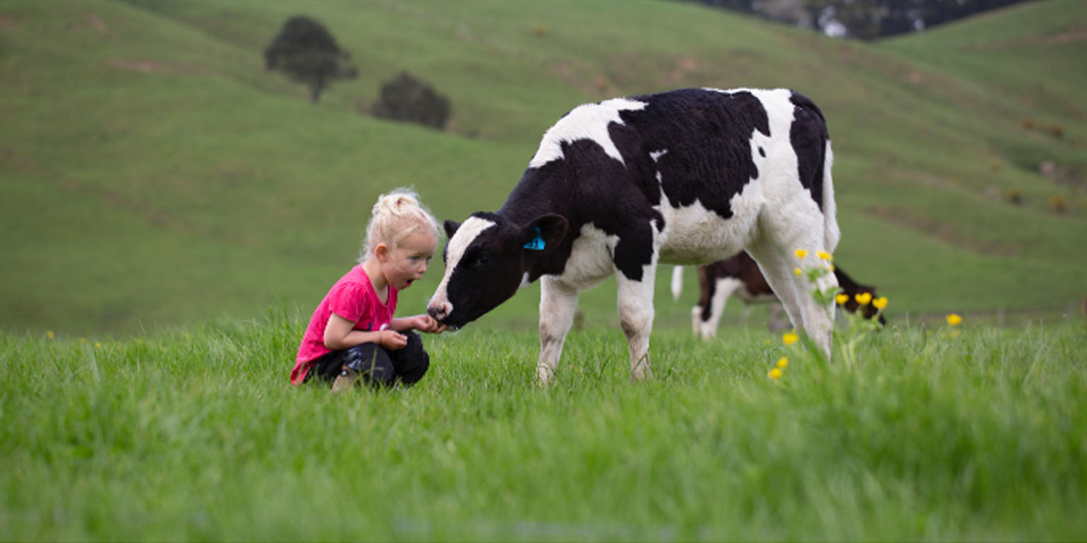 LIC image little girl and cow