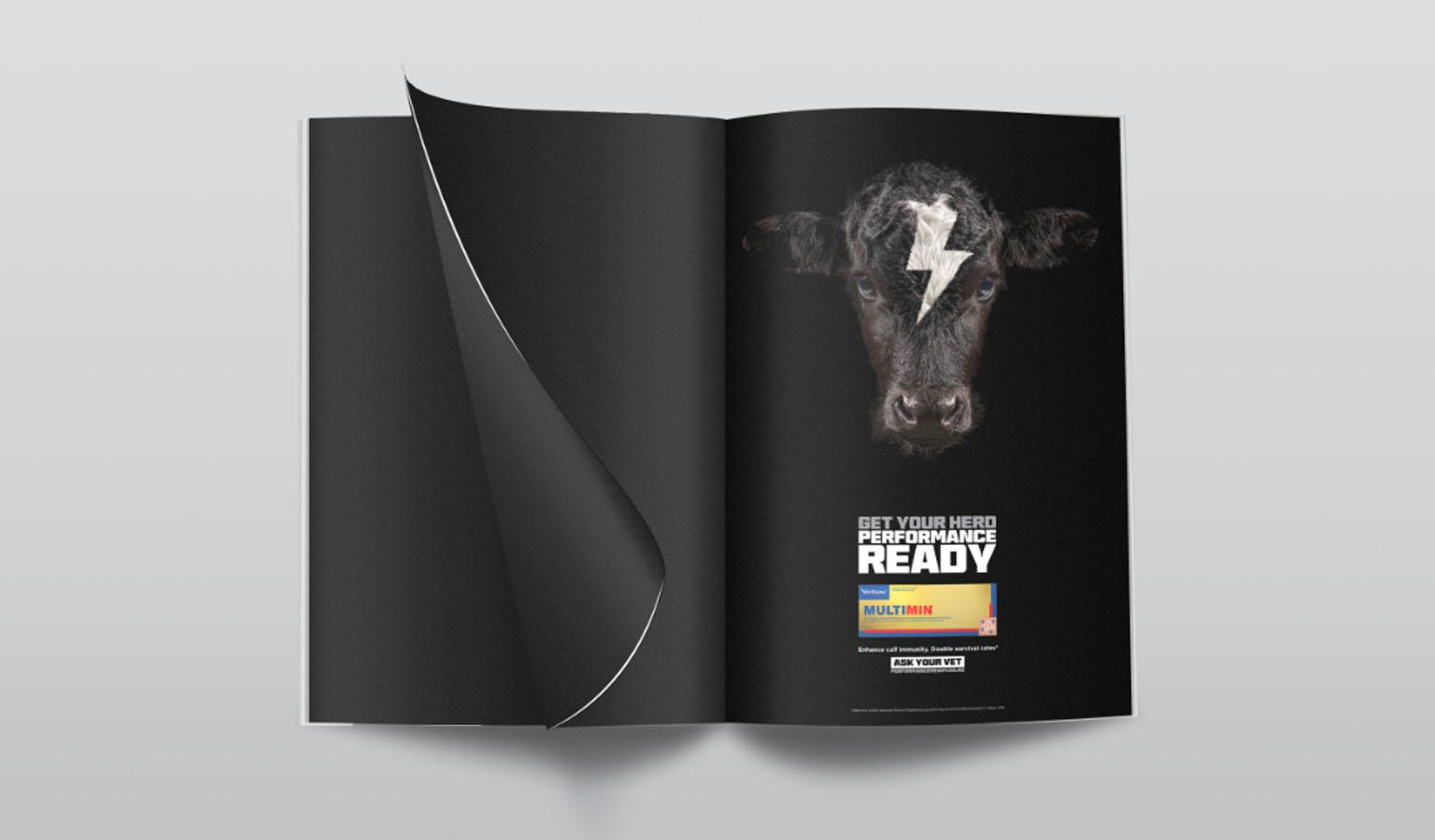 virbac magazine ad design